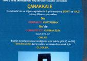 Nazım Siyavuşoğlu Genç Cumhuriyetimiz.